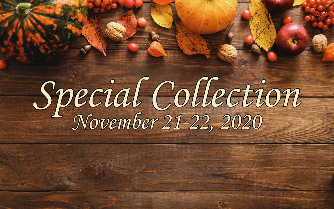 Special Collection for Catholic Charities-Diocese of Tyler